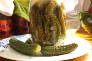 fermented-pickled-cucumbers-recipe