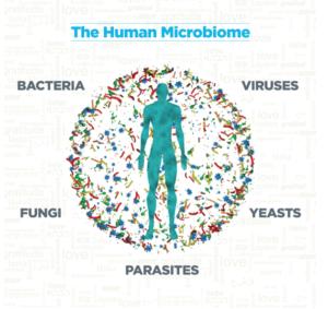 Man vs Microbiome